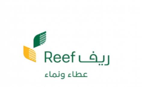 توقيت صرف دعم برنامج ريف لكافة المستفيدين في السعودية